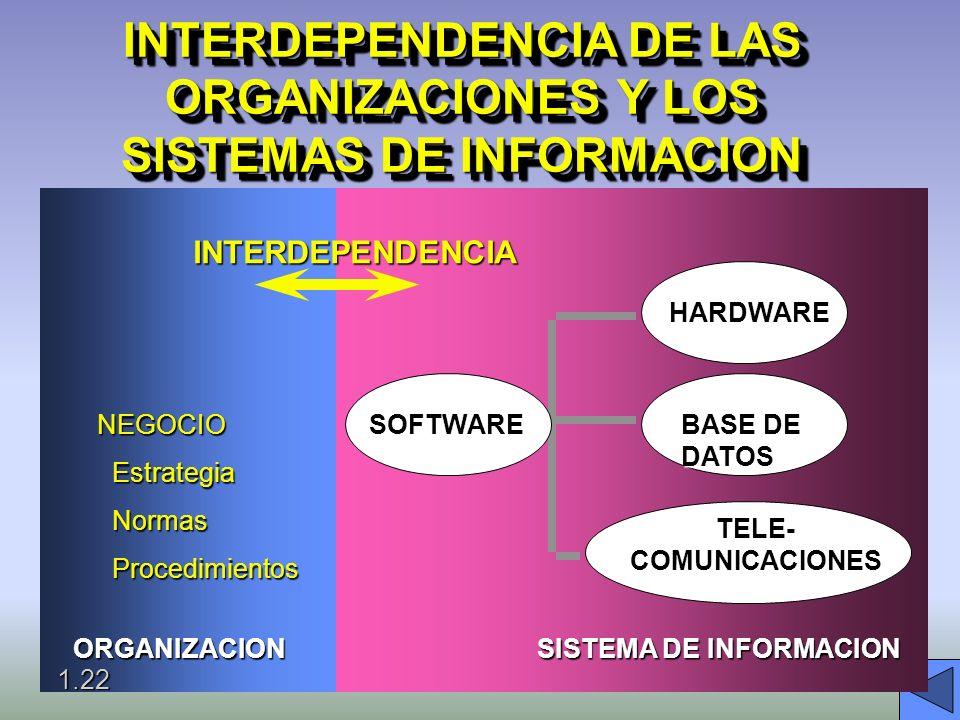 INTERDEPENCIA DE SISTEMAS