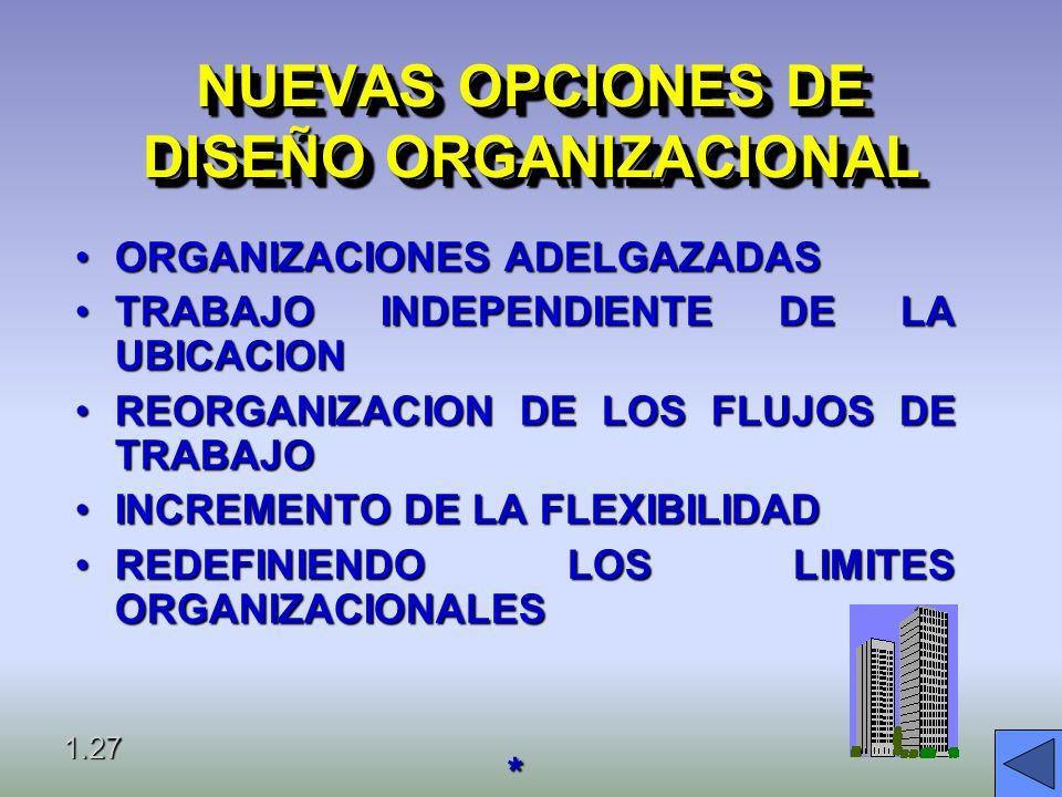NUEVAS OPCIONES DE DISEÑO ORGANIZACIONAL
