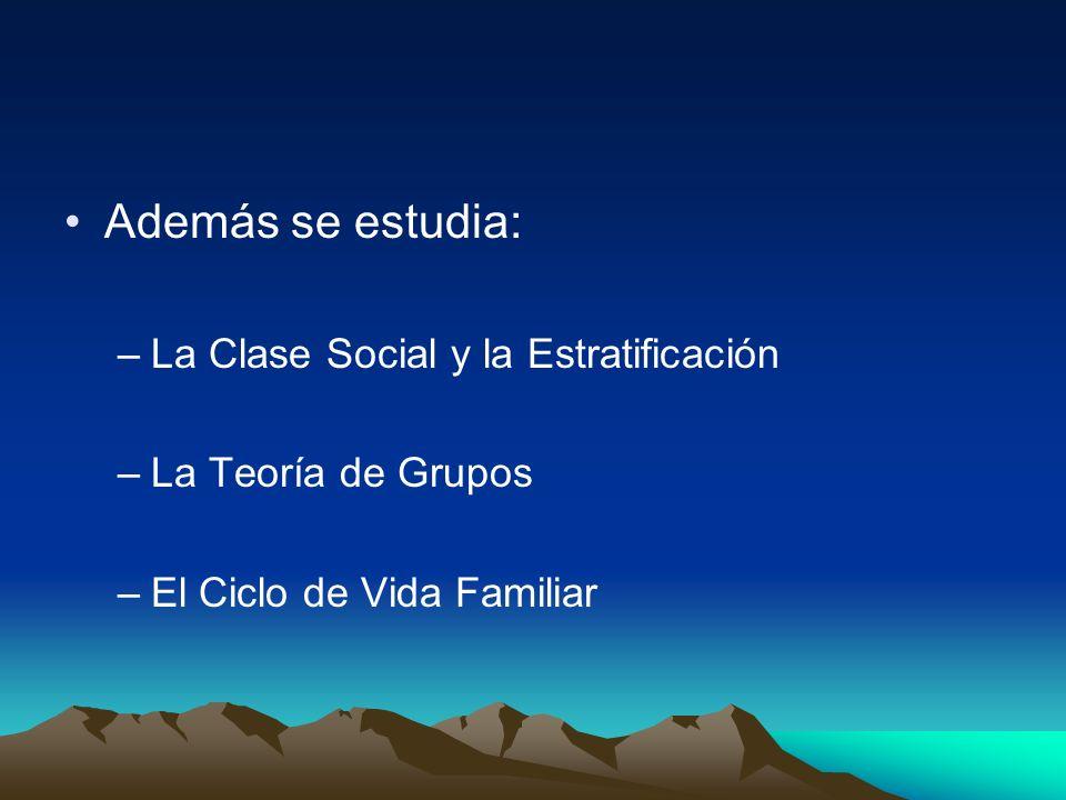 Además se estudia: La Clase Social y la Estratificación