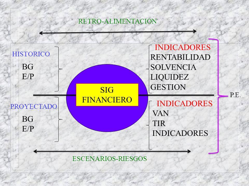 INDICADORES RENTABILIDAD SOLVENCIA LIQUIDEZ BG GESTION E/P SIG
