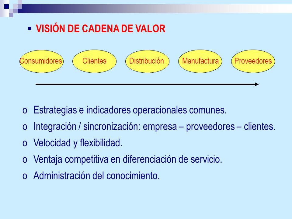 VISIÓN DE CADENA DE VALOR