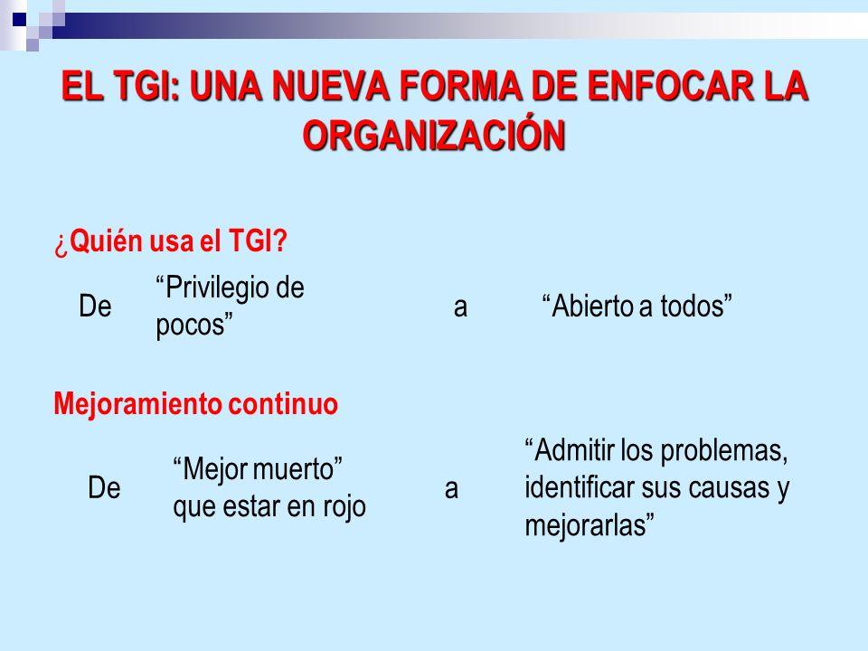 EL TGI: UNA NUEVA FORMA DE ENFOCAR LA ORGANIZACIÓN