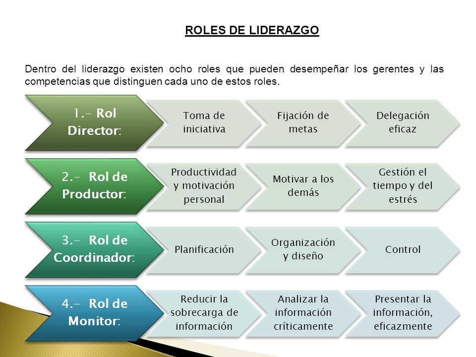 ROLES DE LIDERAZGO