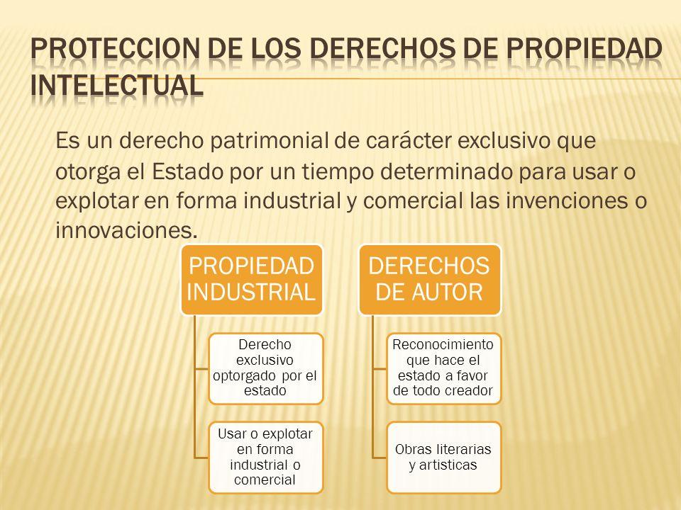PROTECCION DE LOS DERECHOS DE PROPIEDAD INTELECTUAL