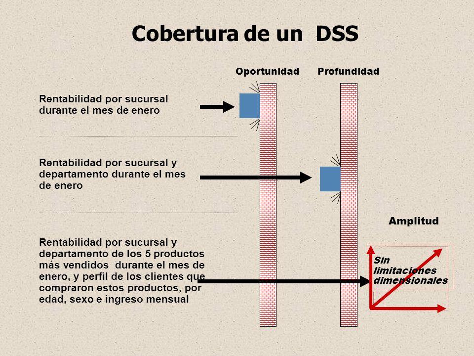 Cobertura de un DSS Rentabilidad por sucursal durante el mes de enero