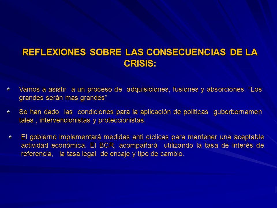 REFLEXIONES SOBRE LAS CONSECUENCIAS DE LA CRISIS: