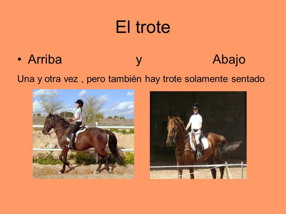 El troteArriba y Abajo.