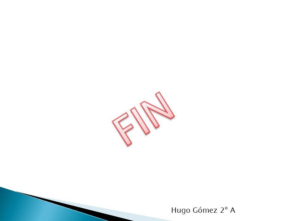 FIN Hugo Gómez 2º A