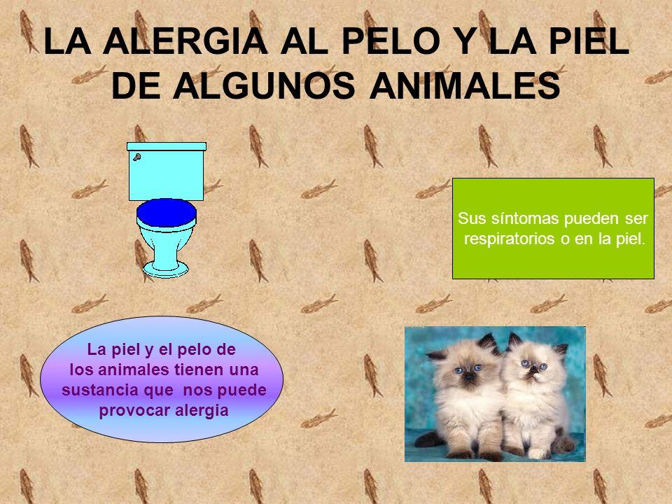 LA ALERGIA AL PELO Y LA PIEL DE ALGUNOS ANIMALES