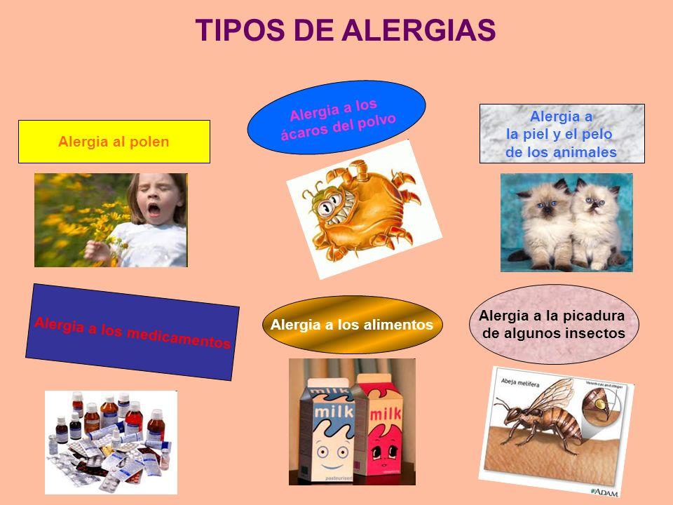 Alergia a los medicamentos Alergia a los alimentos
