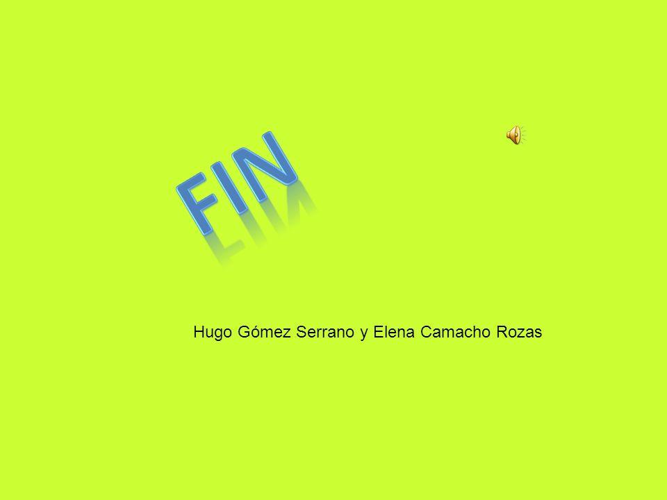 FIN Hugo Gómez Serrano y Elena Camacho Rozas