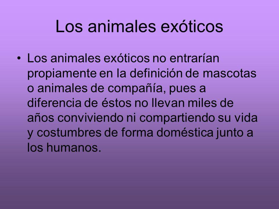 Los animales exóticos