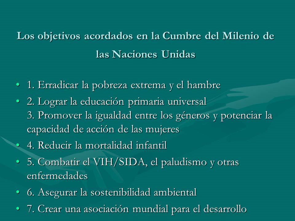 Los objetivos acordados en la Cumbre del Milenio de las Naciones Unidas