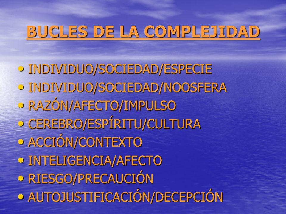 BUCLES DE LA COMPLEJIDAD