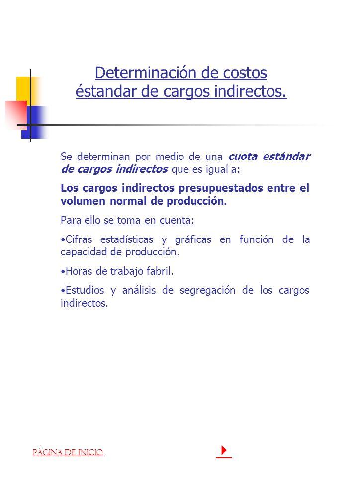 Determinación de costos éstandar de cargos indirectos.