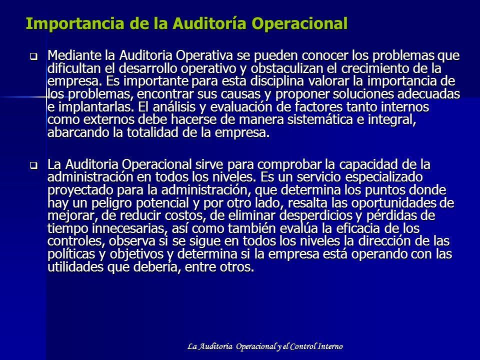 Importancia de la Auditoría Operacional