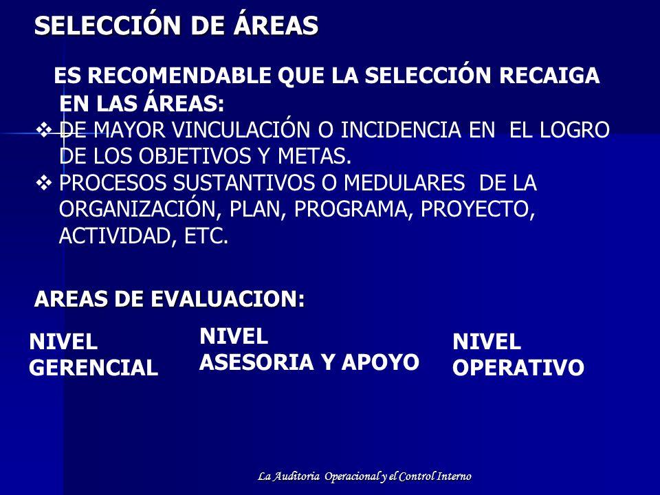La Auditoria Operacional y el Control Interno