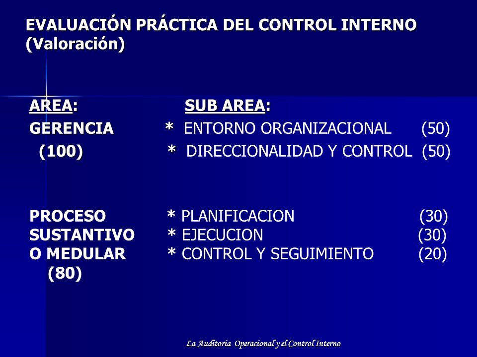 EVALUACIÓN PRÁCTICA DEL CONTROL INTERNO (Valoración)