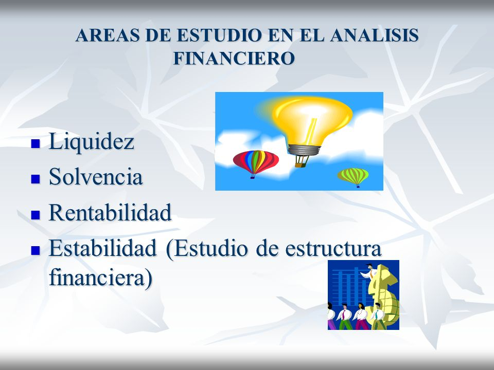 AREAS DE ESTUDIO EN EL ANALISIS FINANCIERO