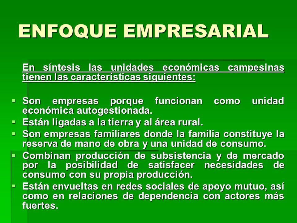 ENFOQUE EMPRESARIALEn síntesis las unidades económicas campesinas tienen las características siguientes: