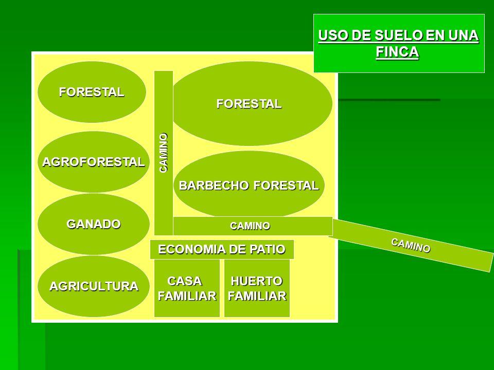 USO DE SUELO EN UNA FINCA