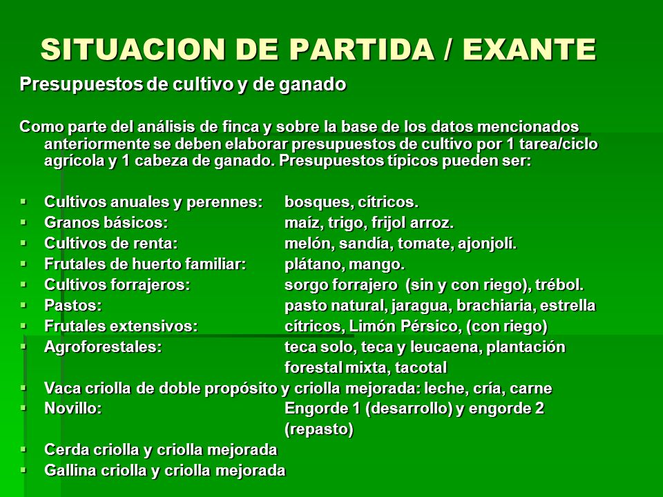SITUACION DE PARTIDA / EXANTE