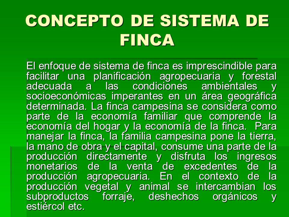 CONCEPTO DE SISTEMA DE FINCA