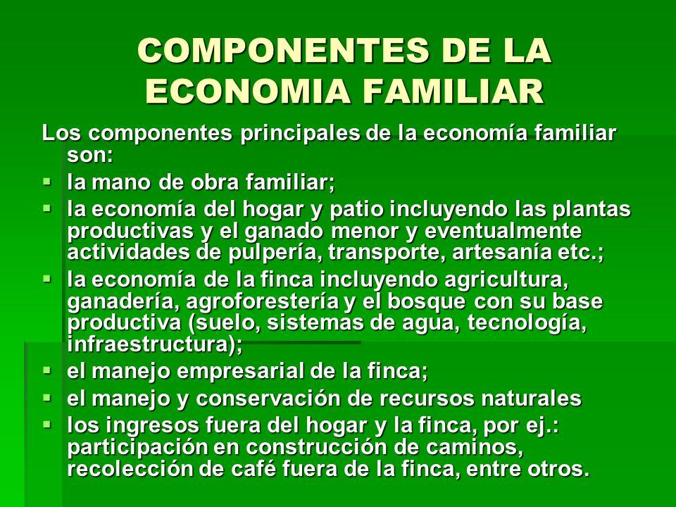 COMPONENTES DE LA ECONOMIA FAMILIAR