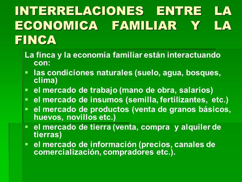 INTERRELACIONES ENTRE LA ECONOMICA FAMILIAR Y LA FINCA