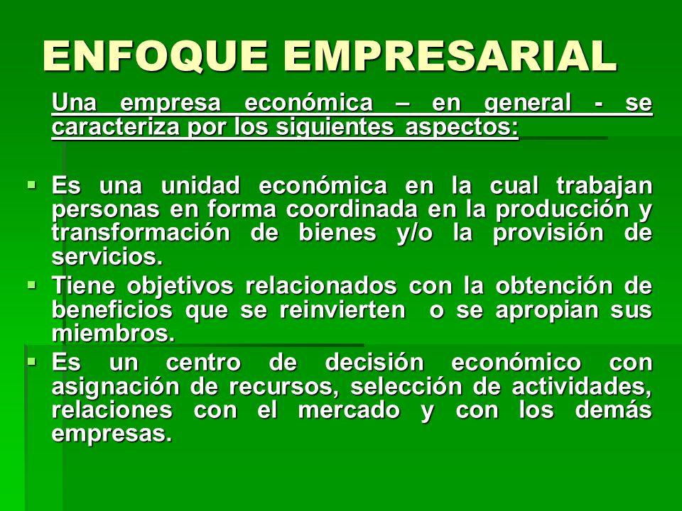 ENFOQUE EMPRESARIAL Una empresa económica – en general - se caracteriza por los siguientes aspectos: