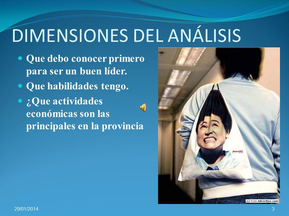 DIMENSIONES DEL ANÁLISIS