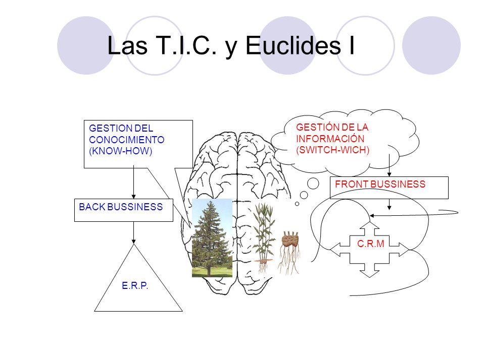 Las T.I.C. y Euclides I GESTIÓN DE LA INFORMACIÓN