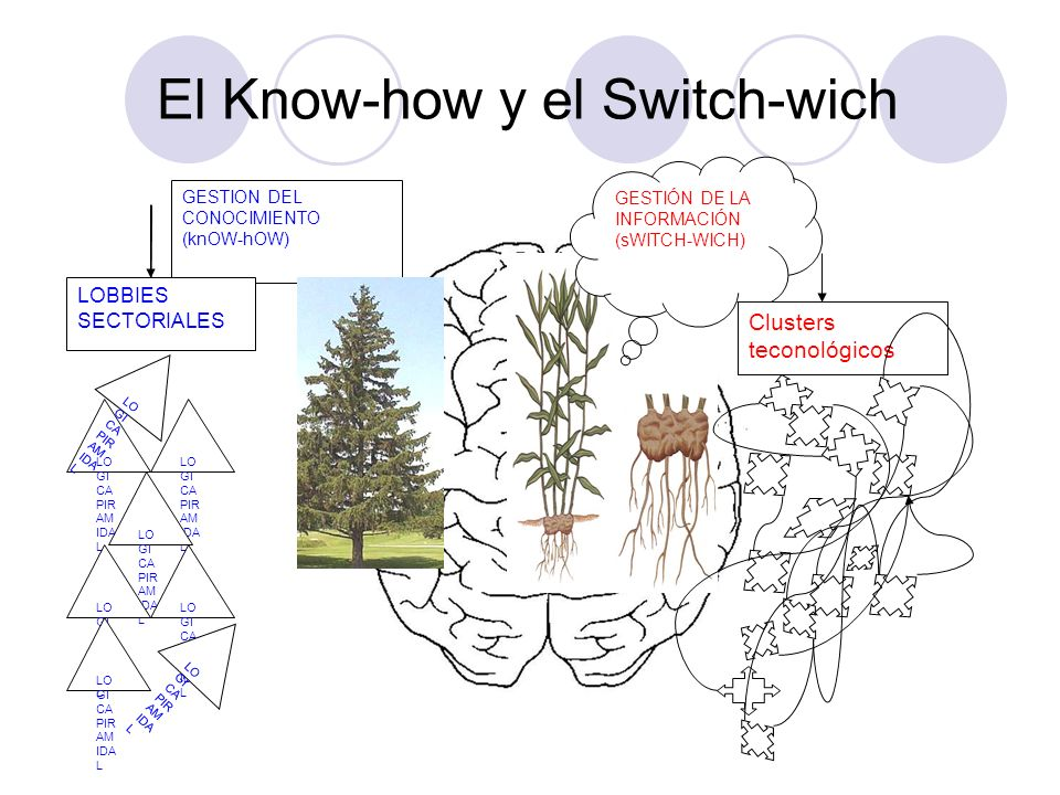 El Know-how y el Switch-wich