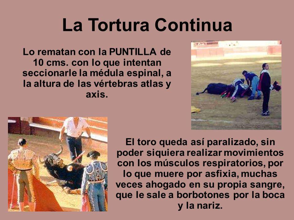 La Tortura Continua