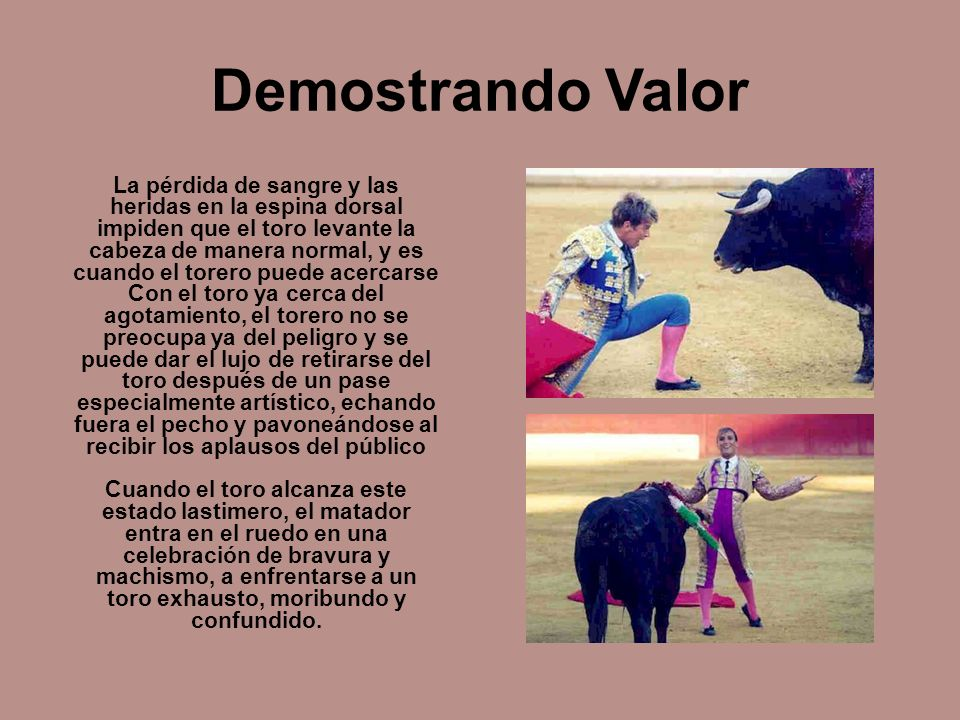 Demostrando Valor