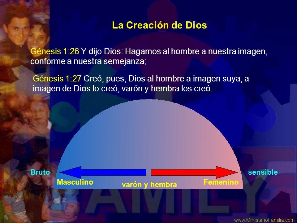 La Creación de Dios Génesis 1:26 Y dijo Dios: Hagamos al hombre a nuestra imagen, conforme a nuestra semejanza;