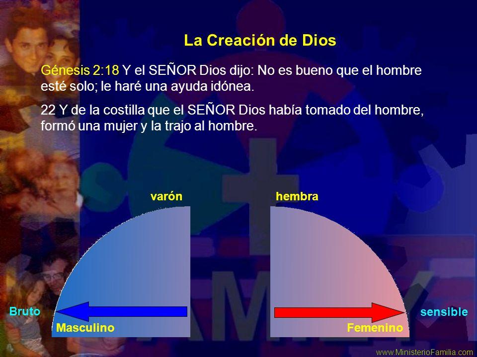 La Creación de DiosGénesis 2:18 Y el SEÑOR Dios dijo: No es bueno que el hombre esté solo; le haré una ayuda idónea.