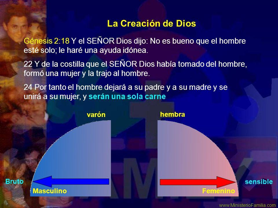 La Creación de Dios Génesis 2:18 Y el SEÑOR Dios dijo: No es bueno que el hombre esté solo; le haré una ayuda idónea.