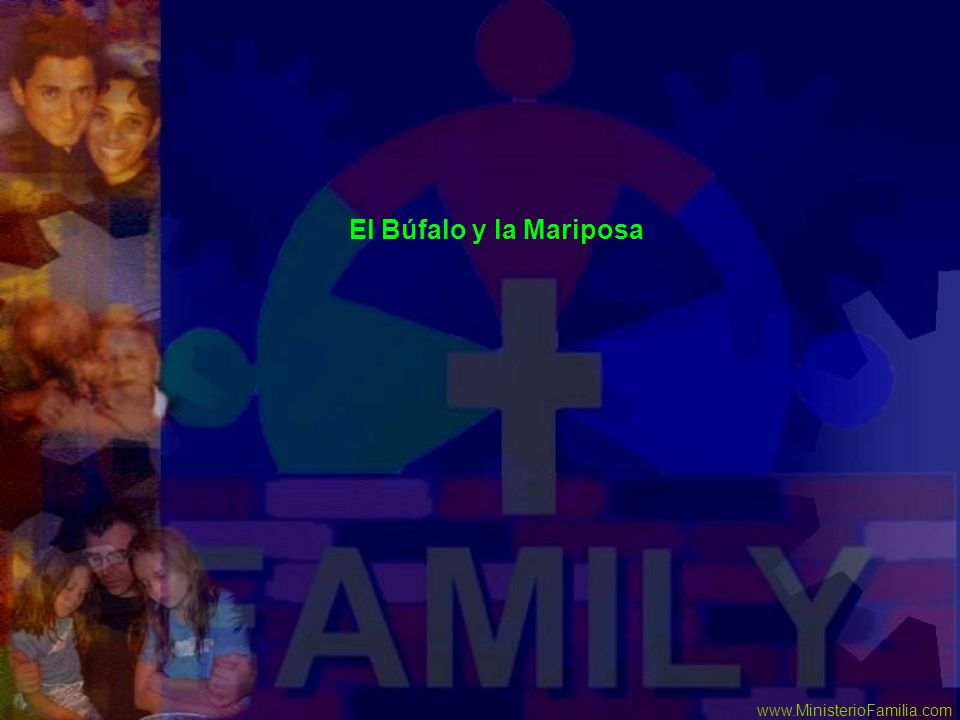 El Búfalo y la Mariposa www.MinisterioFamilia.com