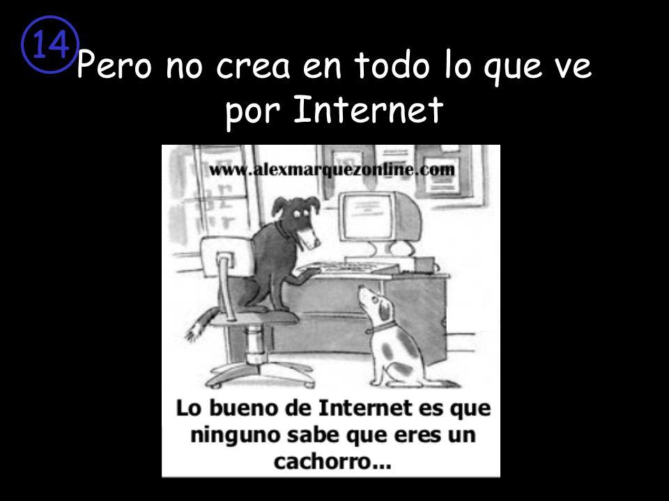 Pero no crea en todo lo que ve por Internet