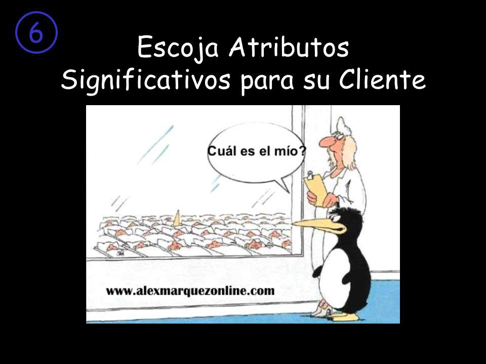 Escoja Atributos Significativos para su Cliente