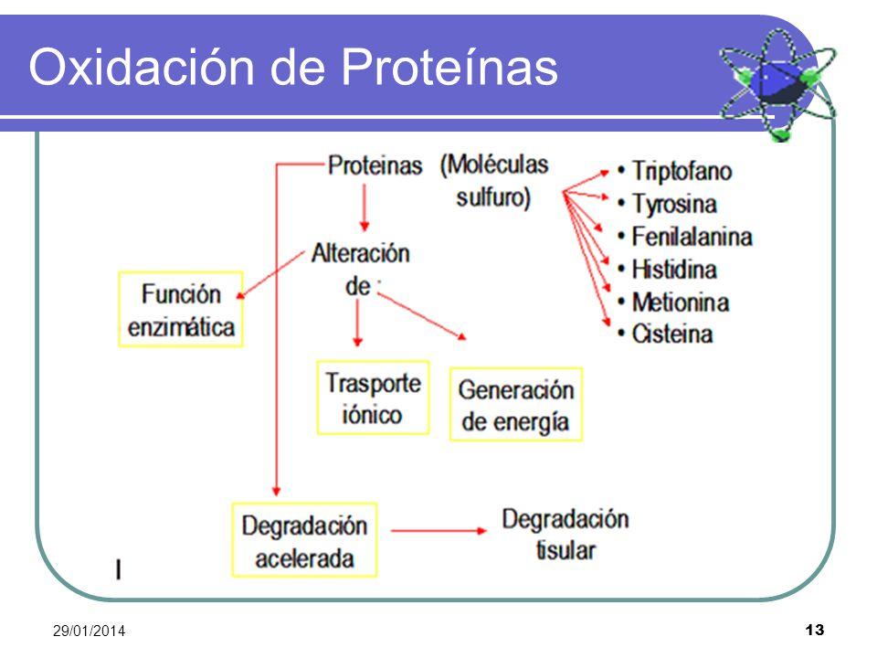 Oxidación de Proteínas