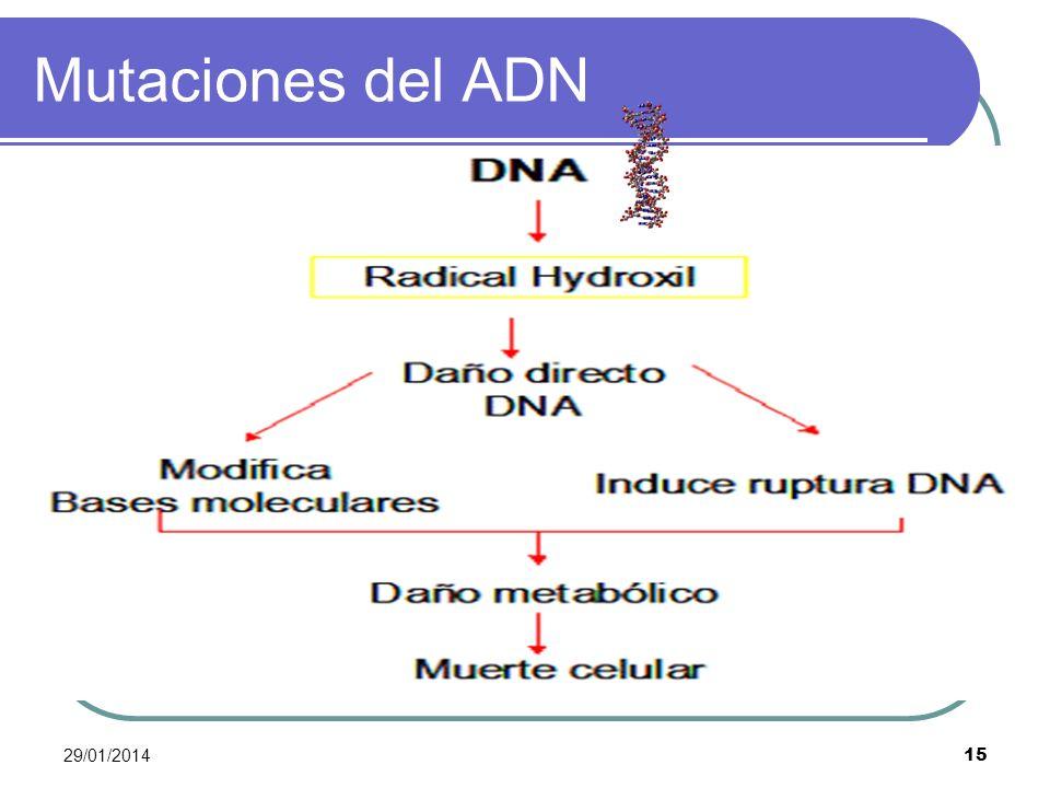 Mutaciones del ADN 24/03/2017