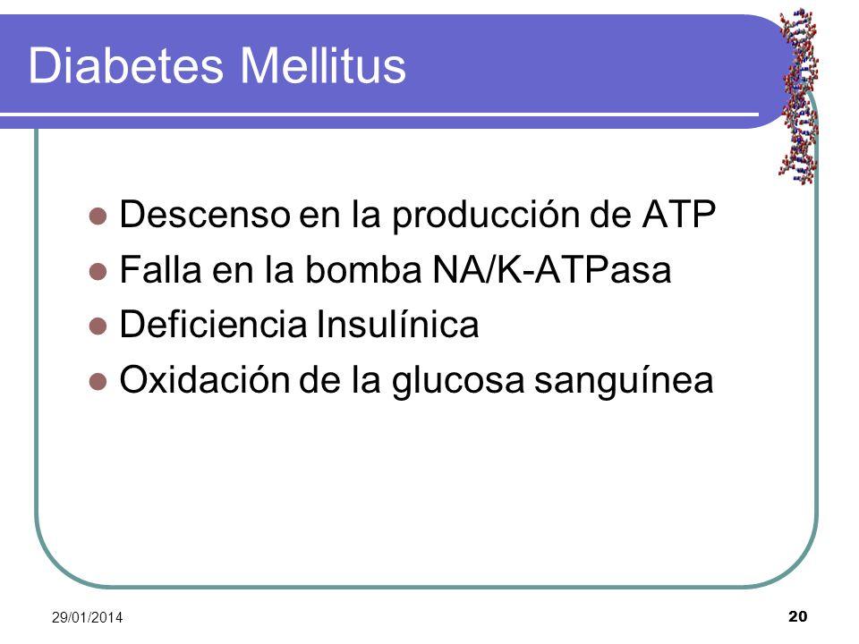 Diabetes Mellitus Descenso en la producción de ATP