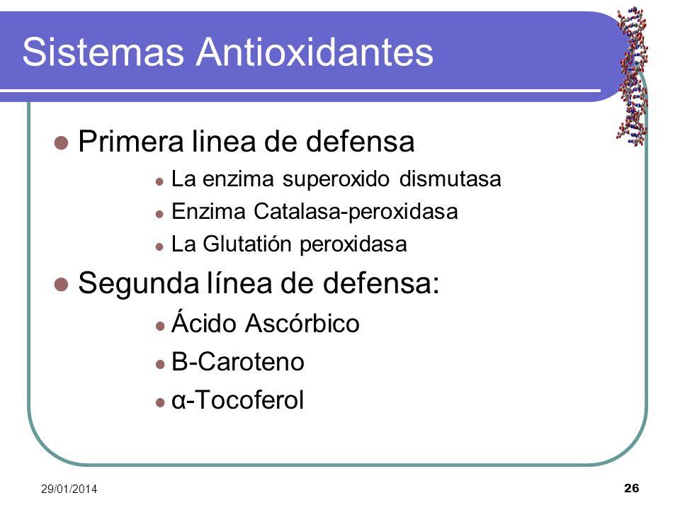 Sistemas Antioxidantes