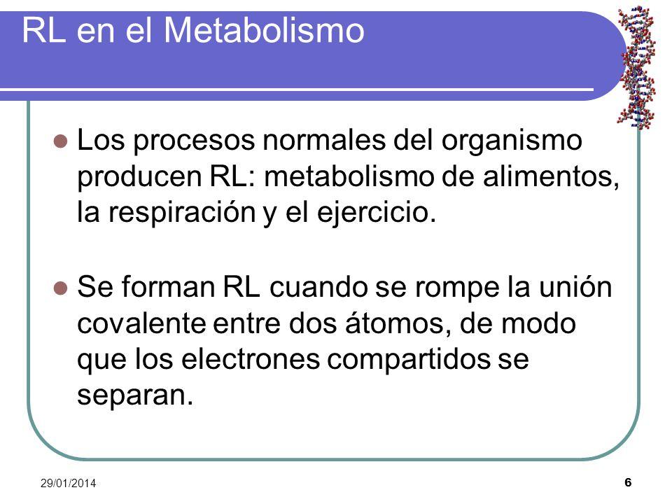 RL en el Metabolismo Los procesos normales del organismo producen RL: metabolismo de alimentos, la respiración y el ejercicio.