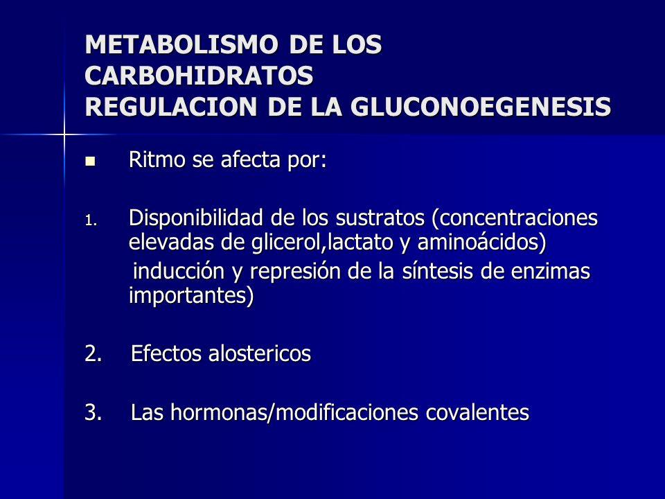 METABOLISMO DE LOS CARBOHIDRATOS REGULACION DE LA GLUCONOEGENESIS