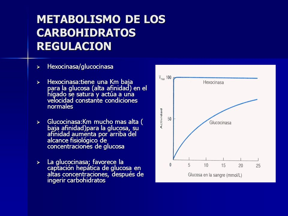METABOLISMO DE LOS CARBOHIDRATOS REGULACION