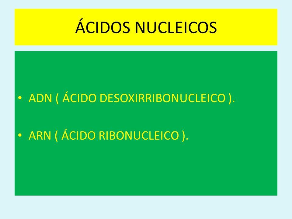 ÁCIDOS NUCLEICOS ADN ( ÁCIDO DESOXIRRIBONUCLEICO ).