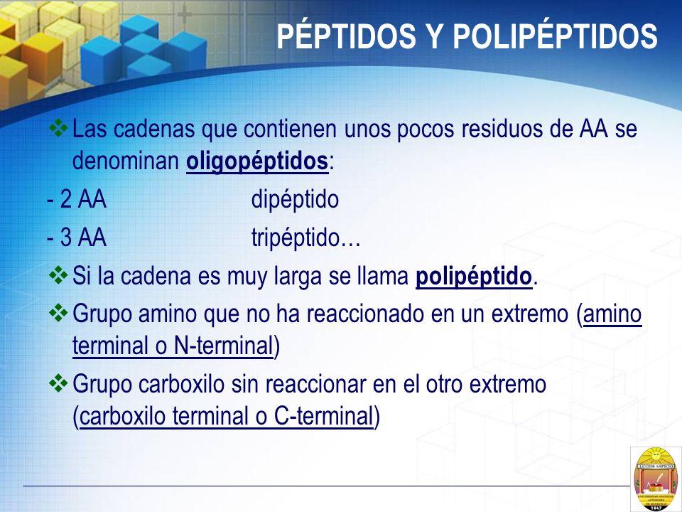 PÉPTIDOS Y POLIPÉPTIDOS
